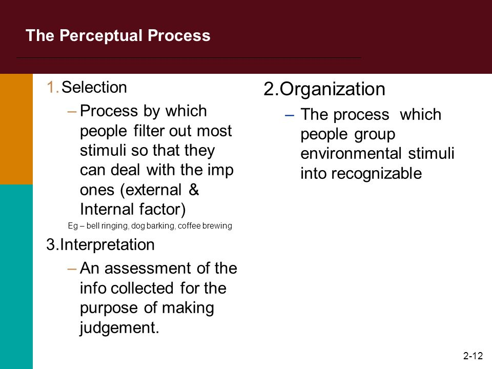 The Perceptual Process