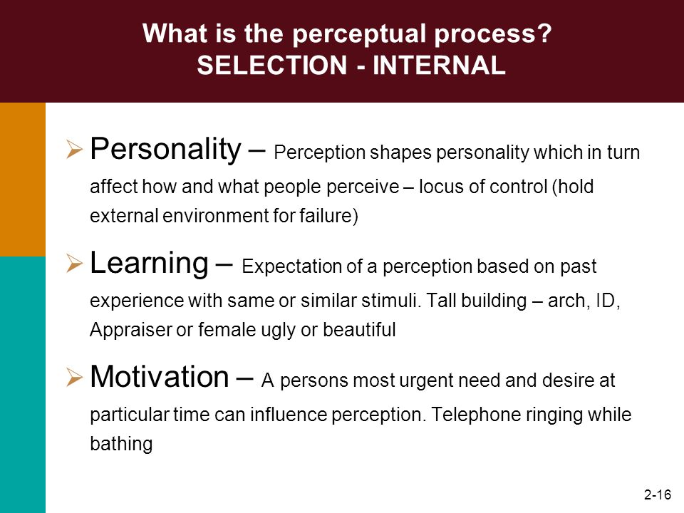 What is the perceptual process SELECTION - INTERNAL