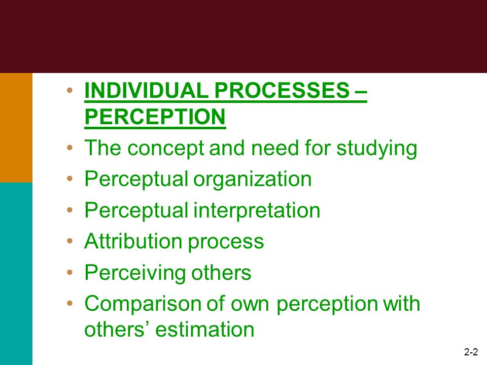 INDIVIDUAL PROCESSES – PERCEPTION