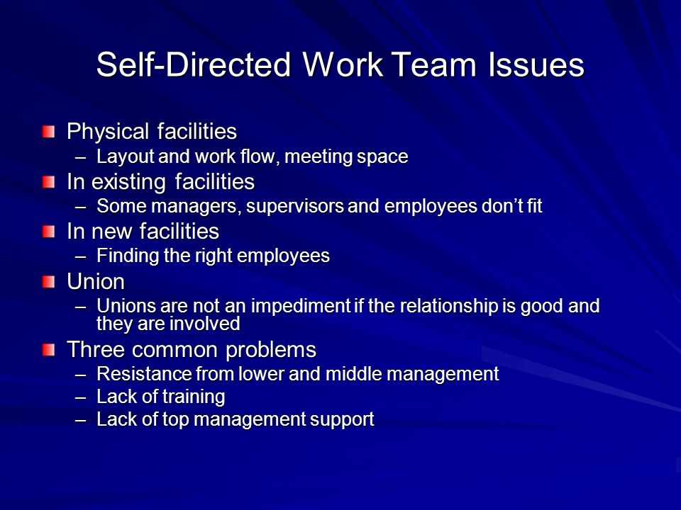 Self-Directed Work Team Issues