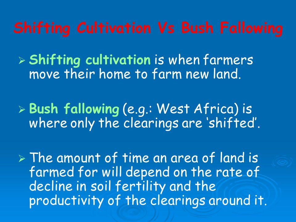 Shifting Cultivation Vs Bush Fallowing