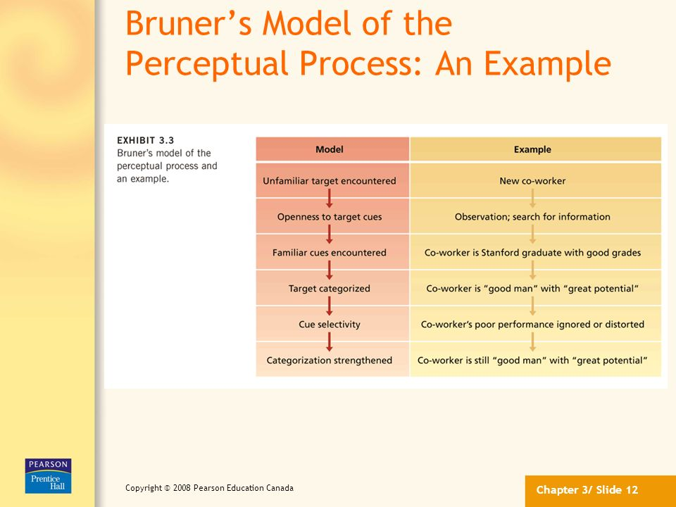 Bruner's Model of the Perceptual Process: An Example