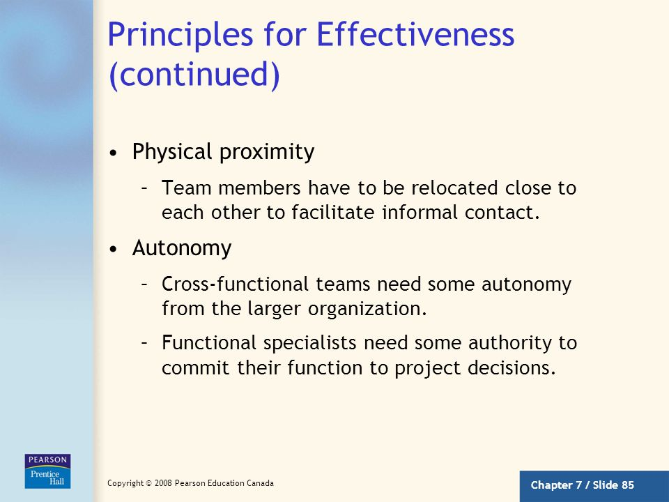 Principles for Effectiveness (continued)
