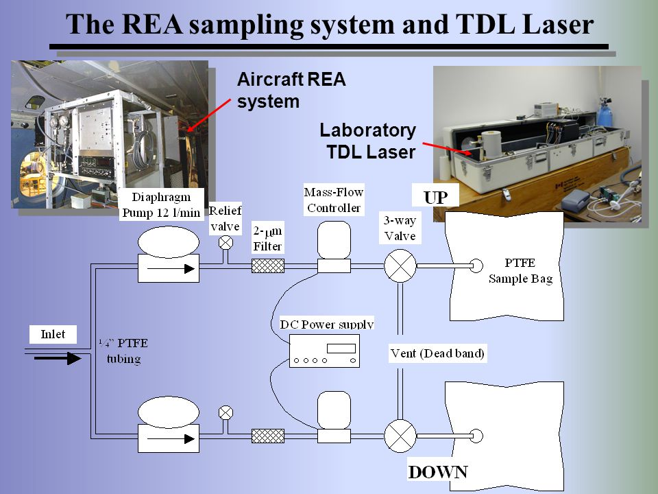 The REA sampling system and TDL Laser