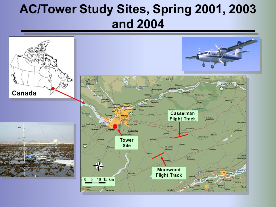 AC/Tower Study Sites, Spring 2001, 2003 and 2004