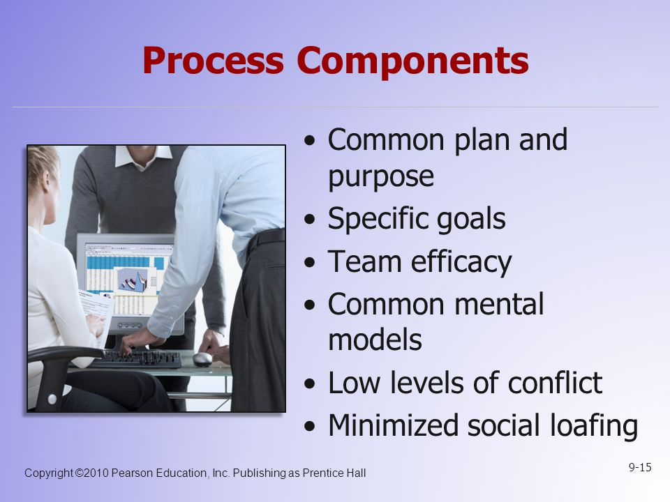 Process Components Common plan and purpose Specific goals