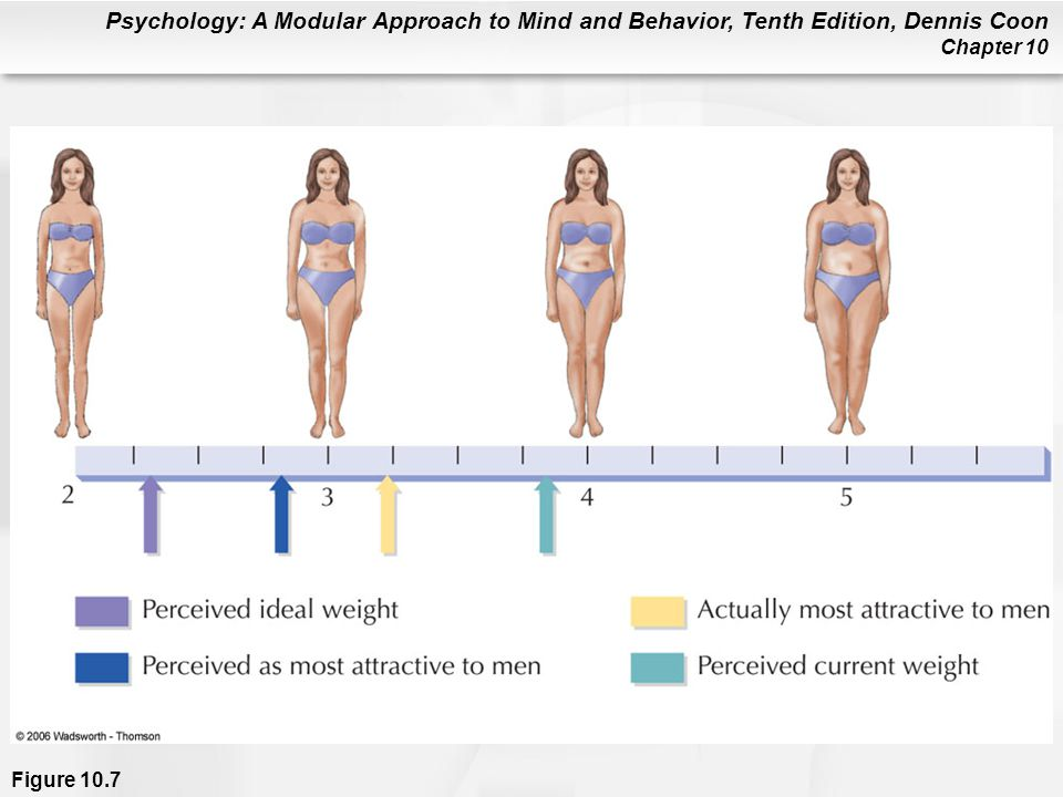 Figure 10.7 Women with abnormal eating habits were asked to rate their body shape on a scale similar to the one you see here. As a group, they chose ideal figures much thinner than what they thought their current weights were. (Most women say they want to be thinner than they currently are, but to a lesser degree than women with eating problems.) Notice that the women with eating problems chose an ideal weight that was even thinner than what they thought men prefer. This is not typical of most women. In this study, only women with eating problems wanted to be thinner than what they thought men find attractive (Zellner, Harner, & Adler, 1989).