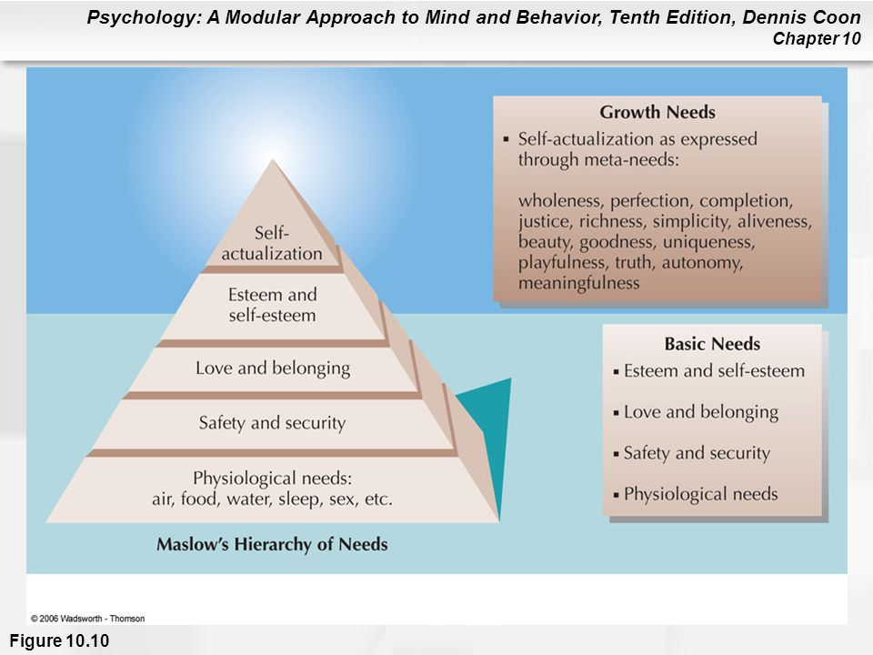 Figure 10.10 Maslow believed that lower needs in the hierarchy are dominant. Basic needs must be satisfied before growth motives are fully expressed. Desires for self-actualization are reflected in various meta-needs (see text).