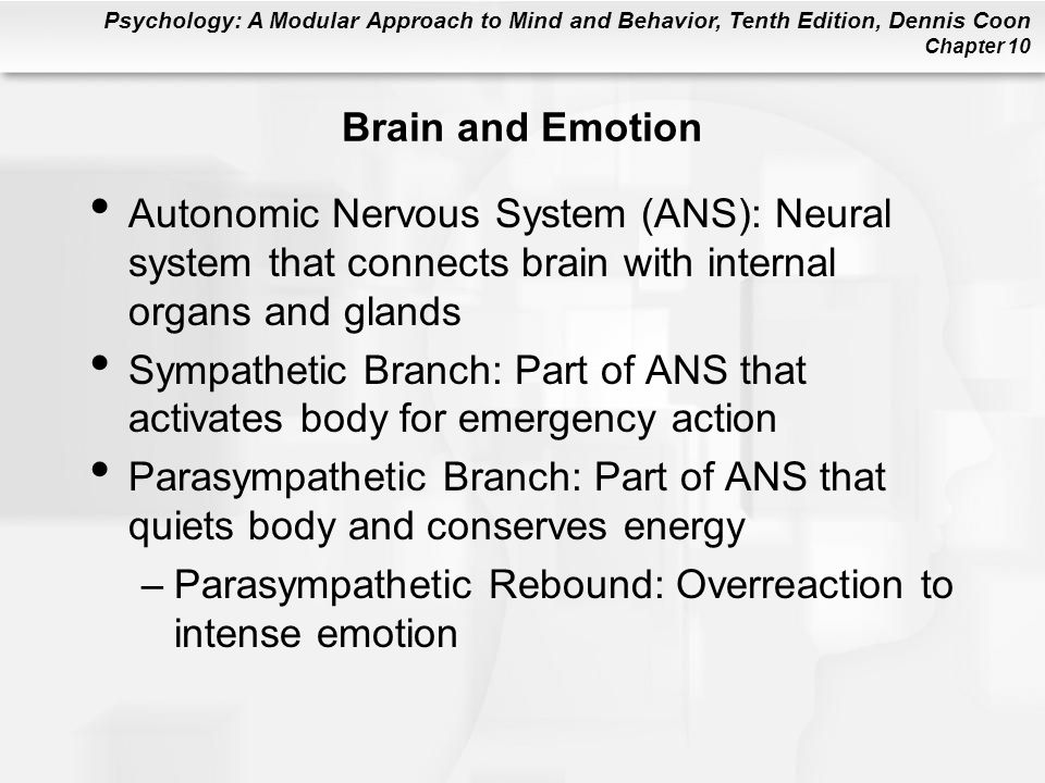 Brain and Emotion Autonomic Nervous System (ANS): Neural system that connects brain with internal organs and glands.