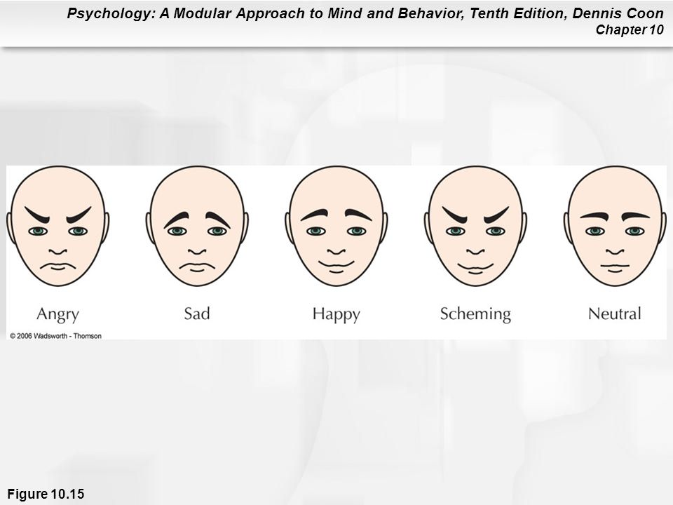Figure 10.15 When shown groups of simplified faces (without labels), the angry and scheming faces jumped out at people faster than sad, happy, or neutral faces. An ability to rapidly detect threatening expressions probably helped our ancestors survive. (Adapted from Tipples, Atkinson, & Young, 2002.)