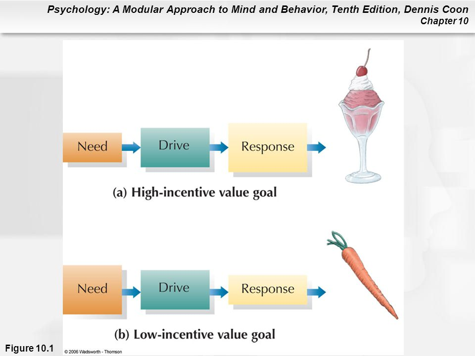 Figure 10.1 Needs and incentives interact to determine drive strength (left). (a) Moderate need combined with a high-incentive goal produces a strong drive. (b) Even when a strong need exists, drive strength may be moderate if a goal's incentive value is low. It is important to remember, however, that incentive value lies in the eye of the beholder (photo). No matter how hungry, few people would be able to eat the pictured grubworms.