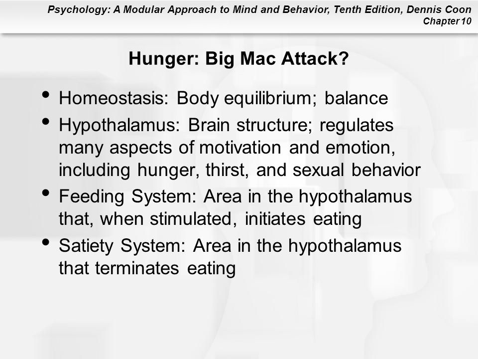 Hunger: Big Mac Attack Homeostasis: Body equilibrium; balance.