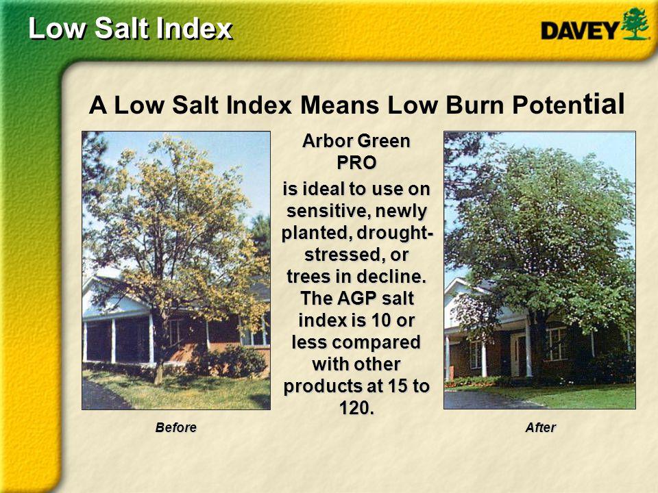 Low Salt Index A Low Salt Index Means Low Burn Potential