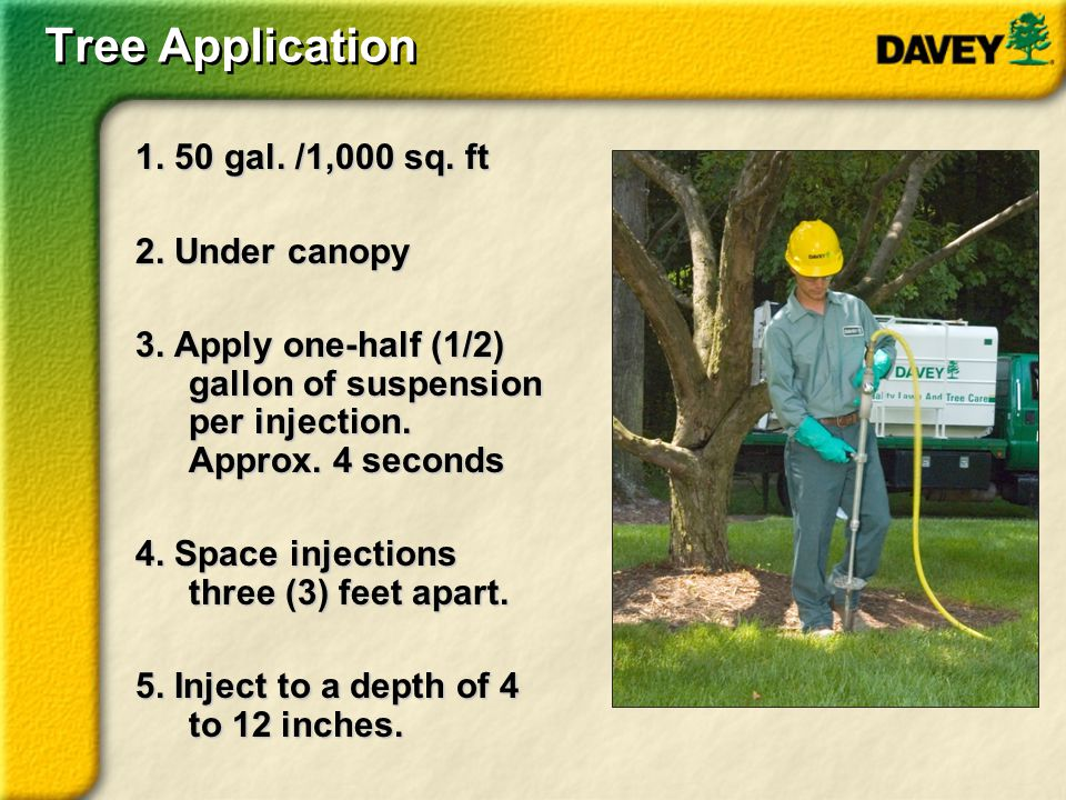 Tree Application 1. 50 gal. /1,000 sq. ft 2. Under canopy