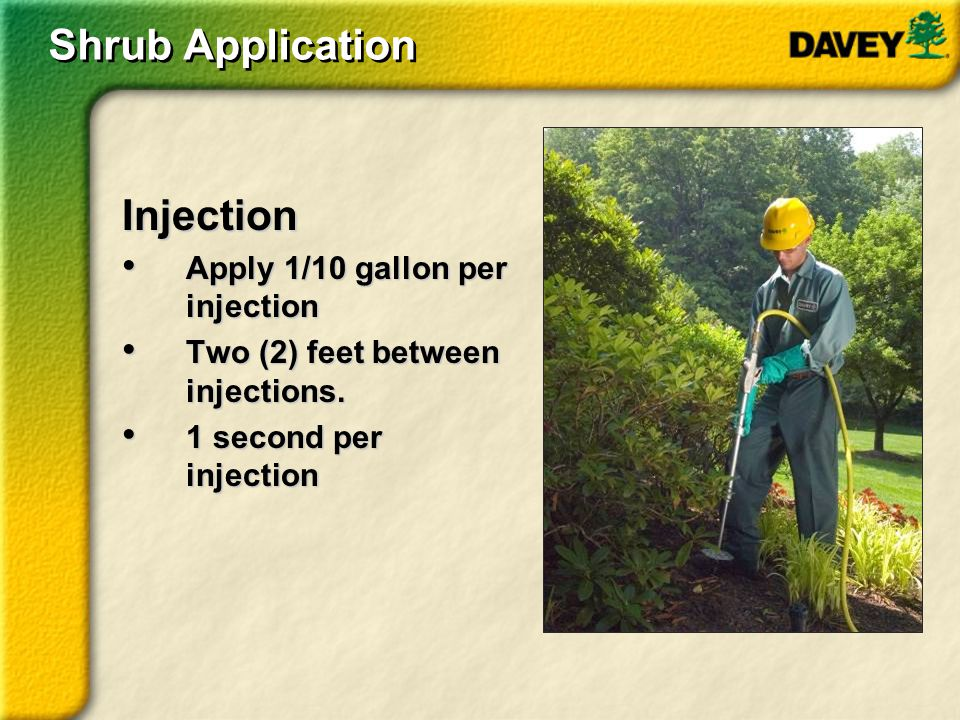 Shrub Application Injection Apply 1/10 gallon per injection