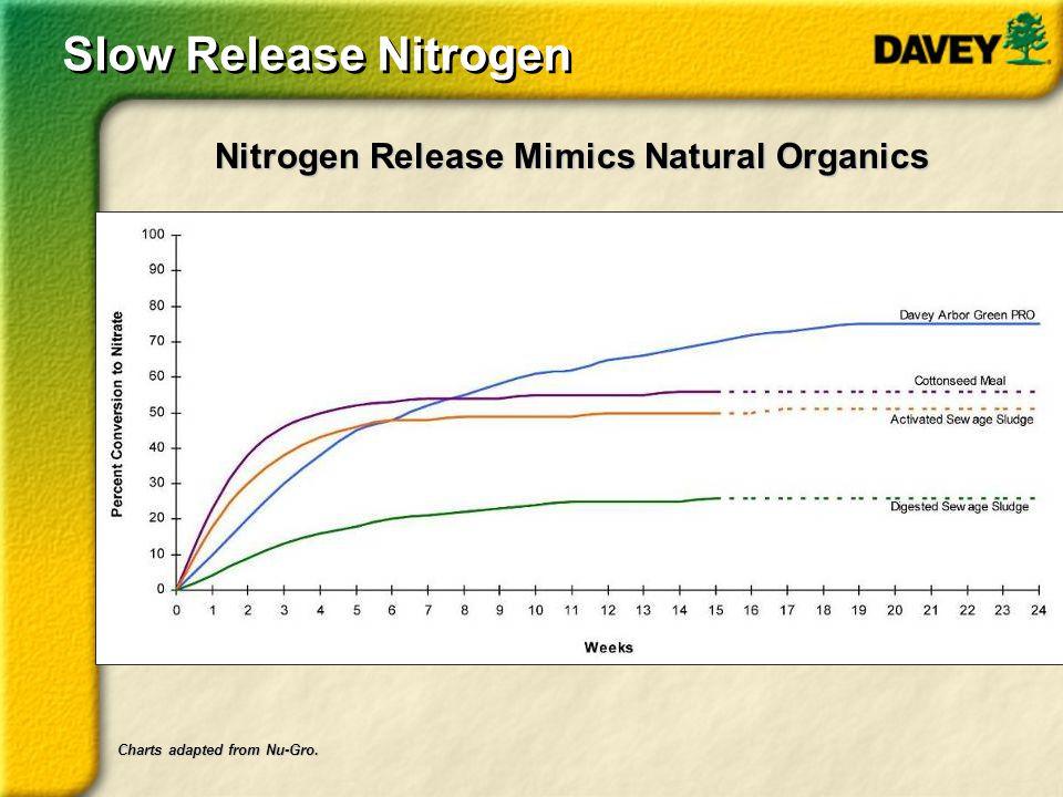 Slow Release Nitrogen Nitrogen Release Mimics Natural Organics