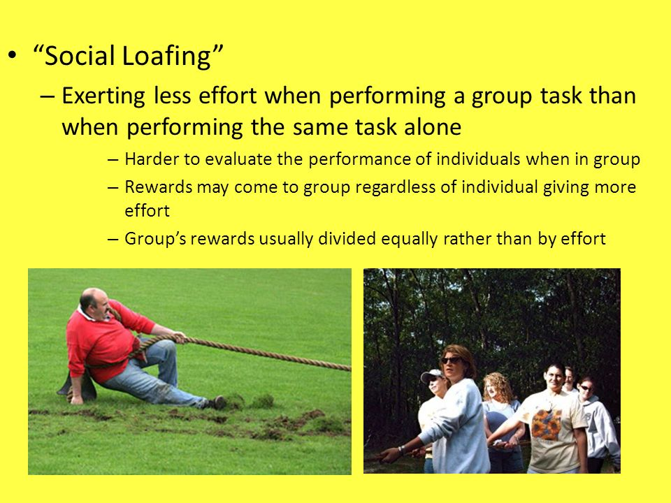 Social Loafing Exerting less effort when performing a group task than when performing the same task alone.
