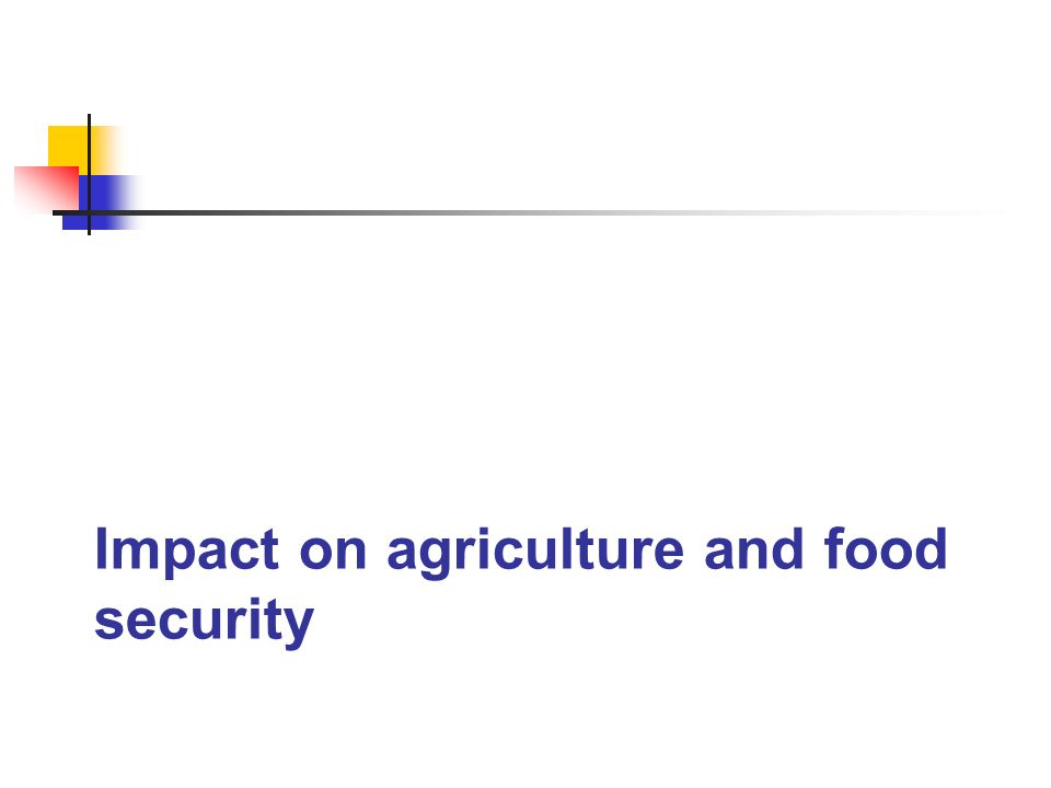 Impact on agriculture and food security