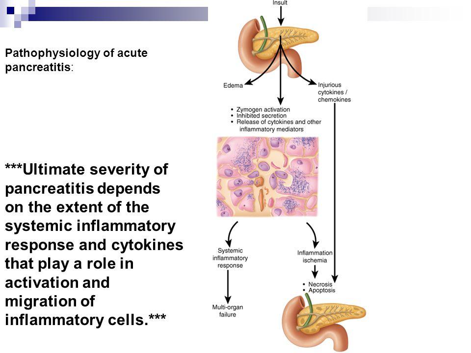 Pathophysiology of acute pancreatitis: