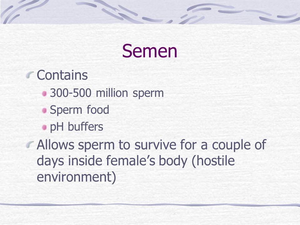 Semen Contains. 300-500 million sperm. Sperm food. pH buffers.