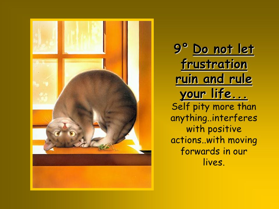 9° Do not let frustration ruin and rule your life