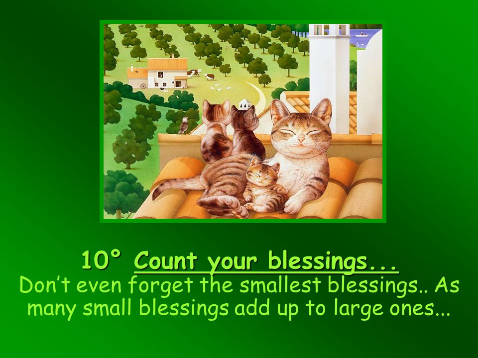 10° Count your blessings. Don't even forget the smallest blessings