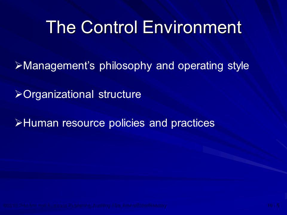 The Control Environment