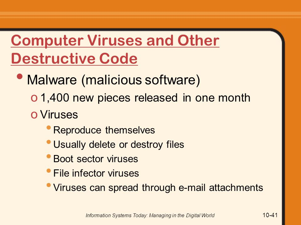 Computer Viruses and Other Destructive Code