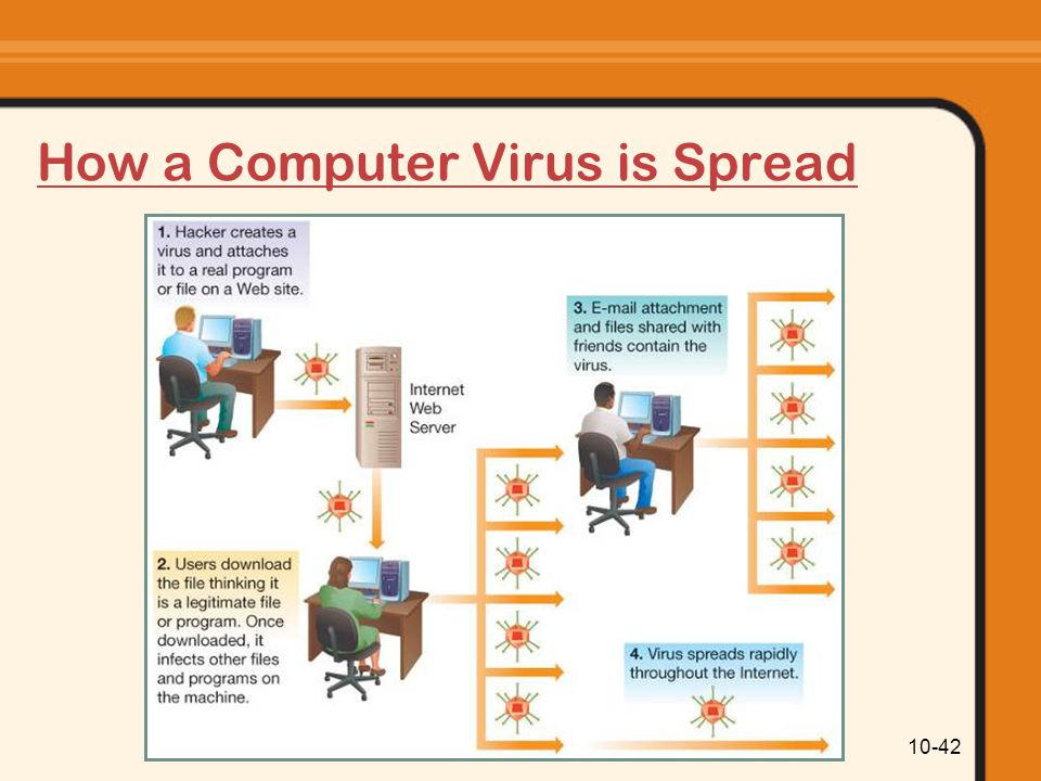 How a Computer Virus is Spread