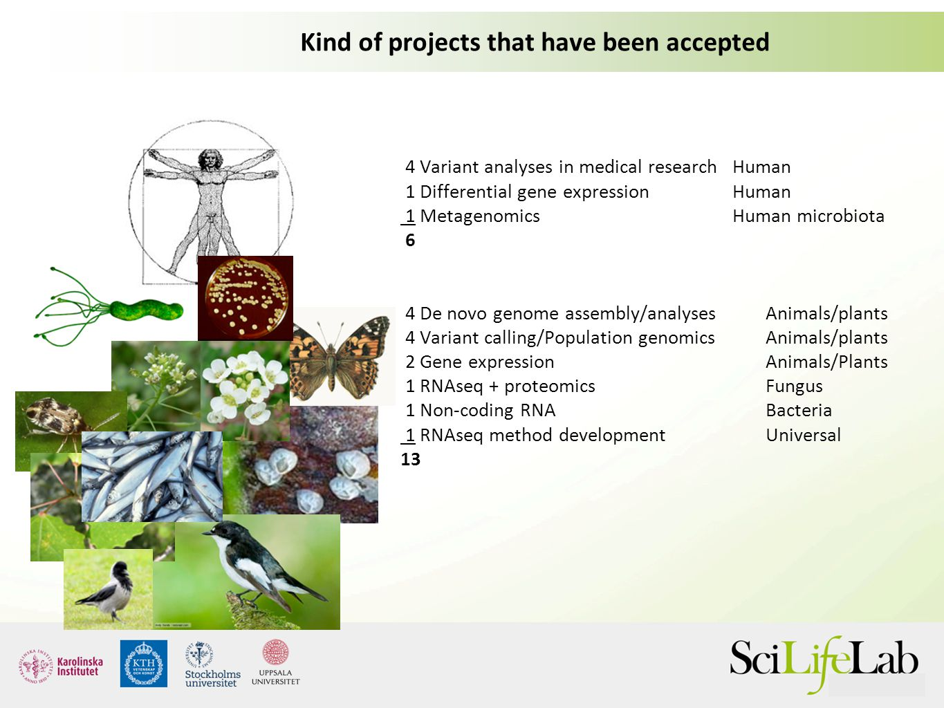 Kind of projects that have been accepted