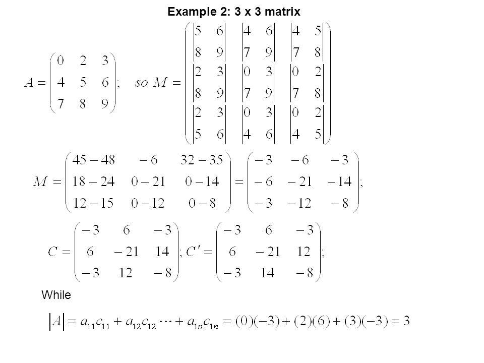Example 2: 3 x 3 matrix While