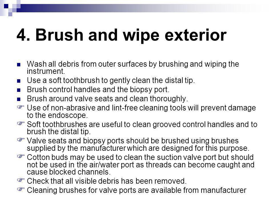 4. Brush and wipe exterior