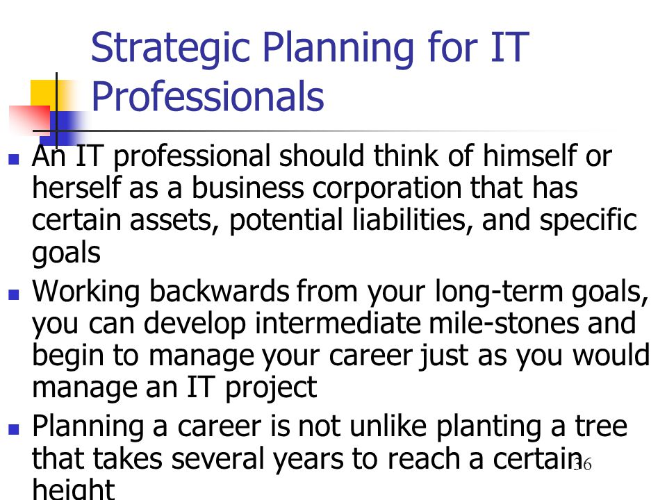 Strategic Planning for IT Professionals