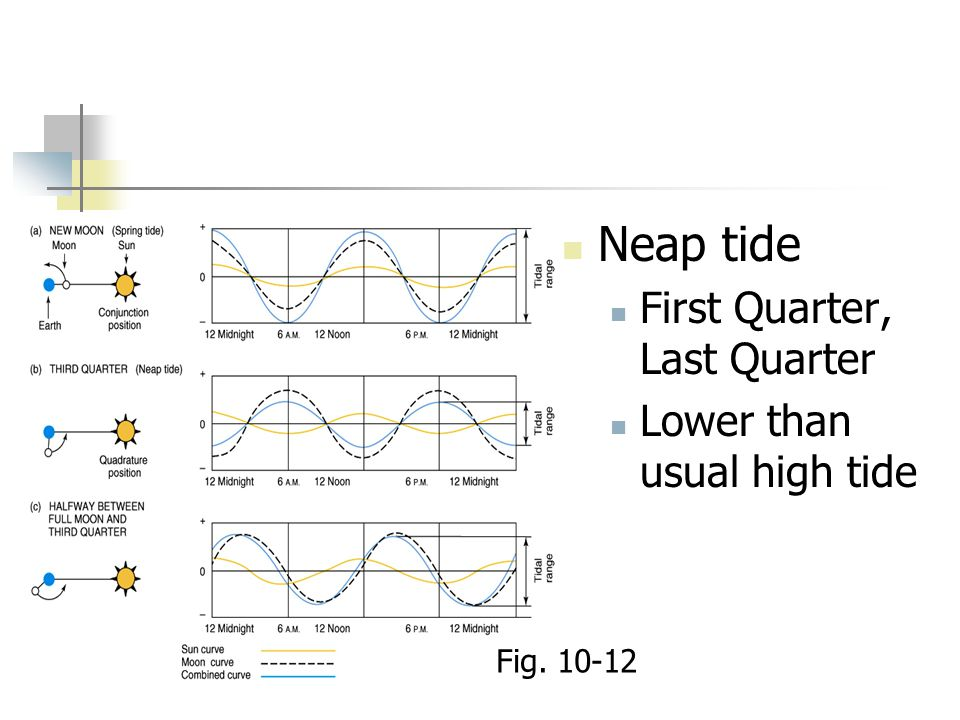 Neap tide First Quarter, Last Quarter Lower than usual high tide