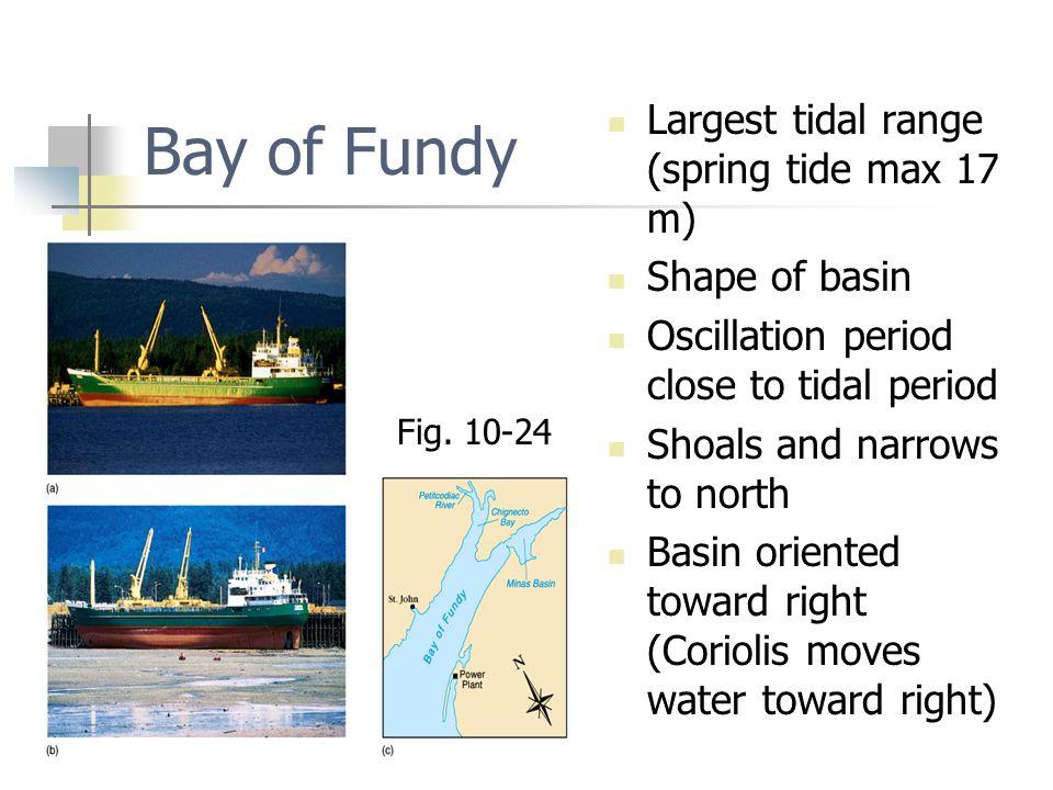Bay of Fundy Largest tidal range (spring tide max 17 m) Shape of basin