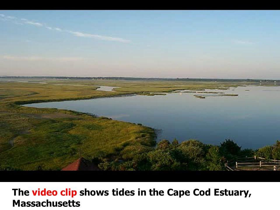The video clip shows tides in the Cape Cod Estuary, Massachusetts