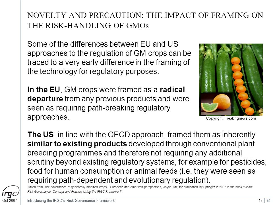 NOVELTY AND PRECAUTION: THE IMPACT OF FRAMING ON THE RISK-HANDLING OF GMOs