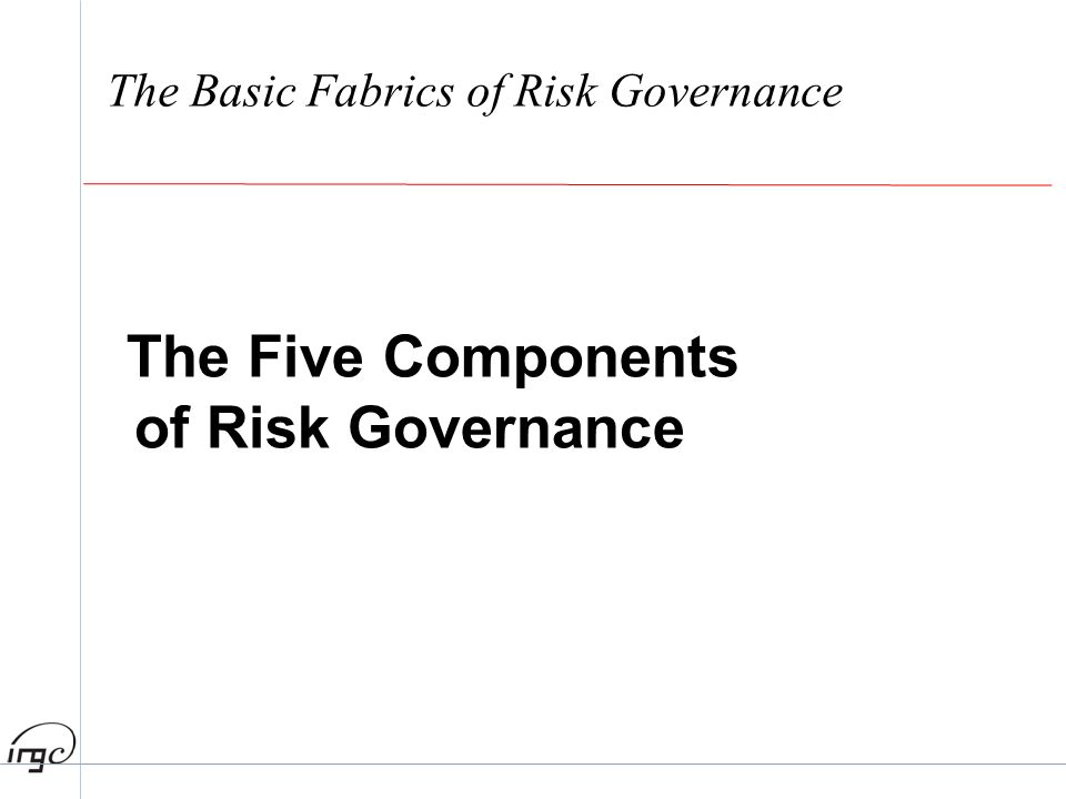 The Basic Fabrics of Risk Governance