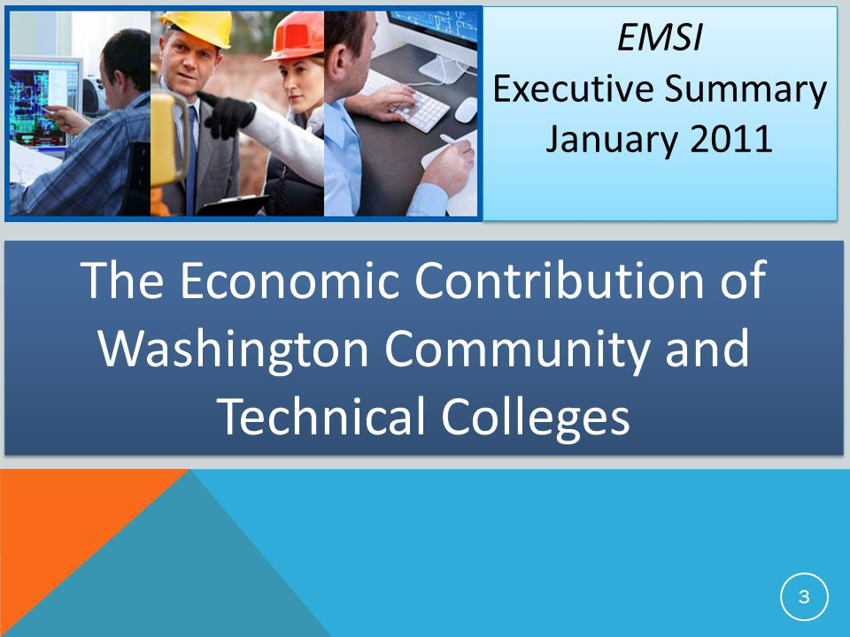 EMSI Executive Summary. January 2011.