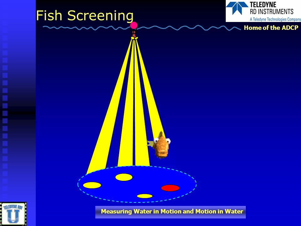 Fish Screening I mentioned earlier that solid object can cause a bump in the RSSI profile. Click.