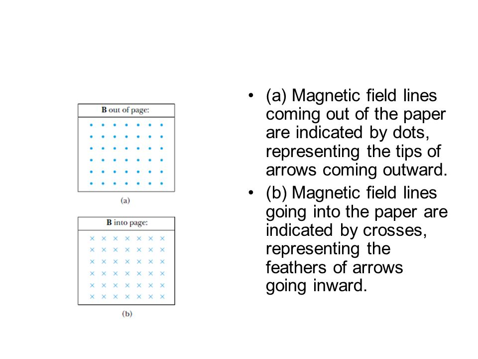 (a) Magnetic field lines coming out of the paper are indicated by dots, representing the tips of arrows coming outward.