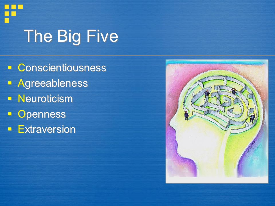 The Big Five Conscientiousness Agreeableness Neuroticism Openness