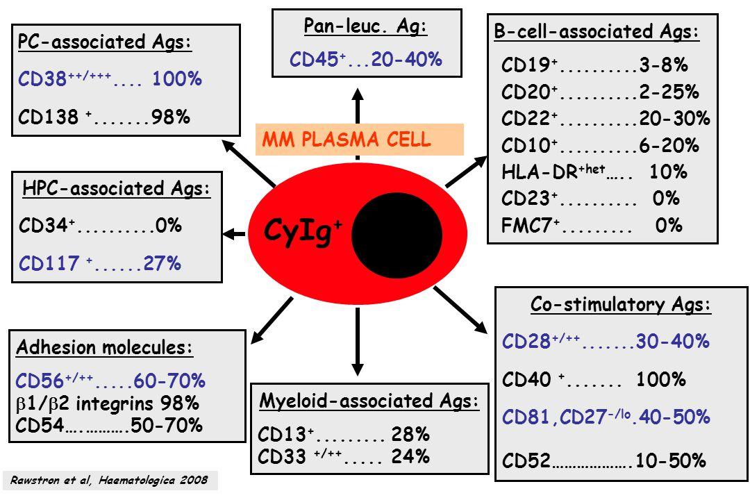 Myeloid-associated Ags: