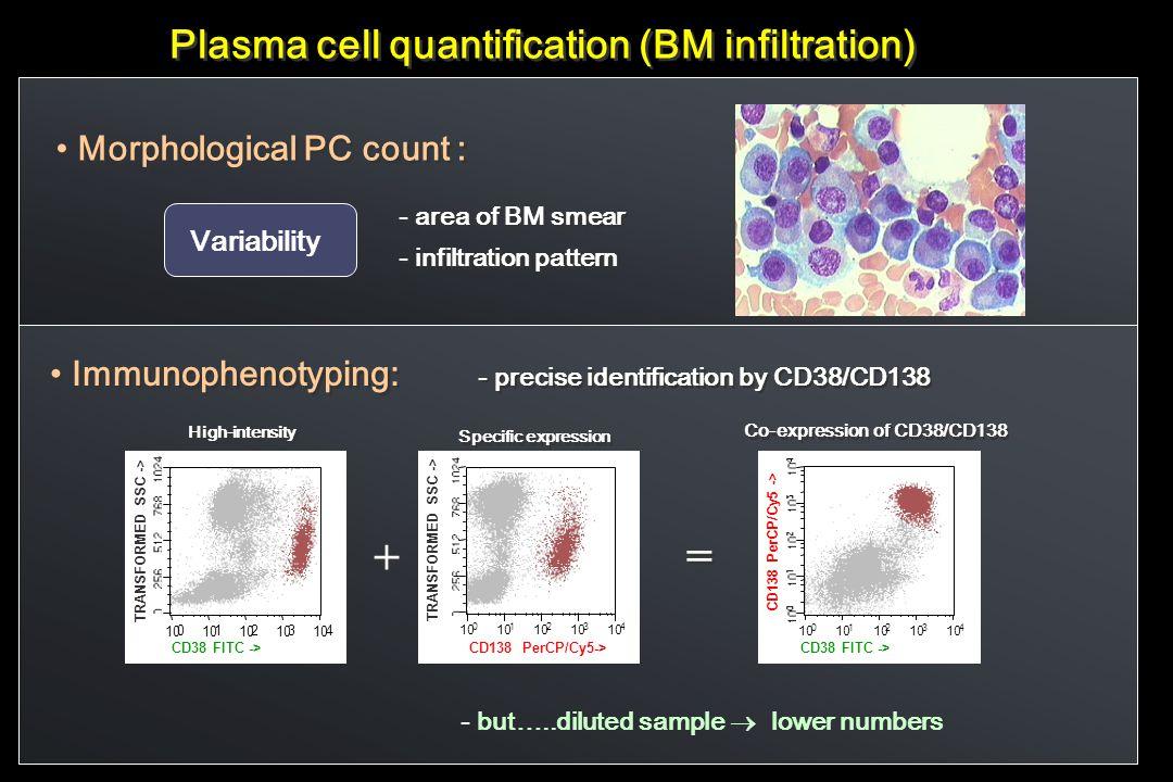 + = Plasma cell quantification (BM infiltration)