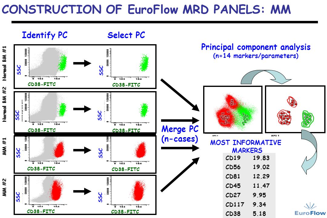 Principal component analysis (n=14 markers/parameters)