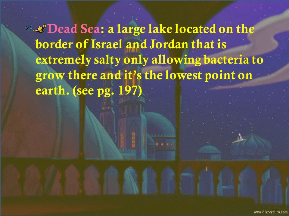 Dead Sea: a large lake located on the border of Israel and Jordan that is extremely salty only allowing bacteria to grow there and it's the lowest point on earth.