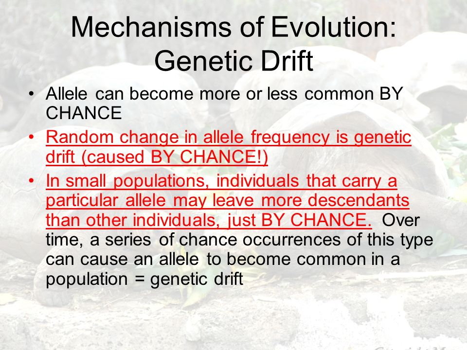 Mechanisms of Evolution: Genetic Drift