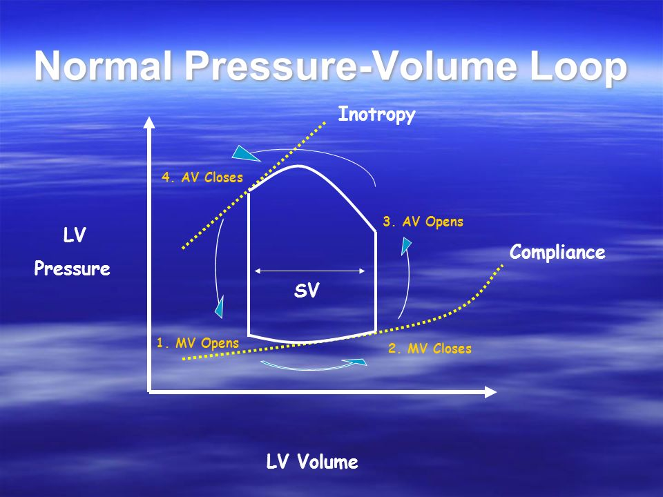 Normal Pressure-Volume Loop