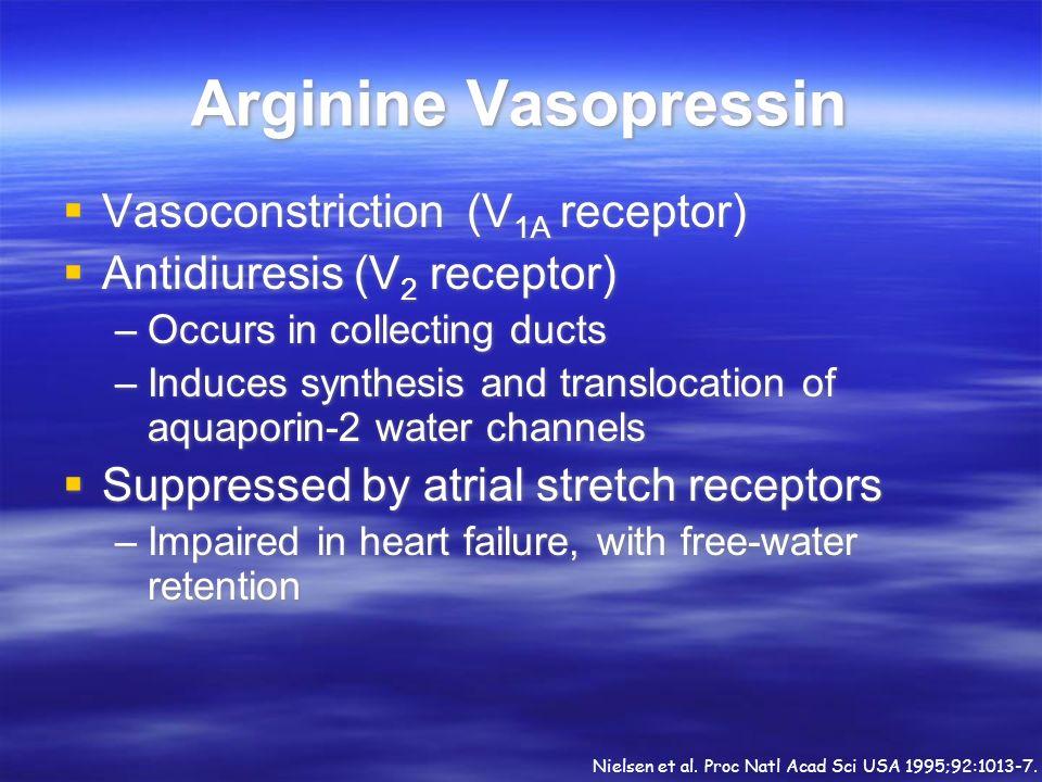 Arginine Vasopressin Vasoconstriction (V1A receptor)