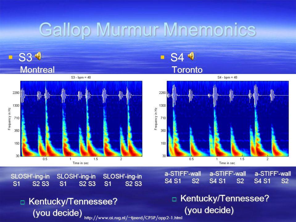 Gallop Murmur Mnemonics